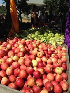 Apples, apples, apples.